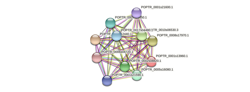 POPTR_0001s13960.1 protein (Populus trichocarpa) - STRING interaction network