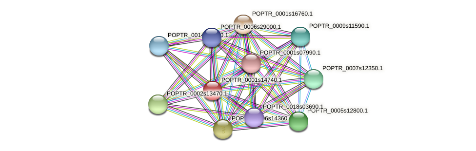 POPTR_0001s14740.1 protein (Populus trichocarpa) - STRING interaction network