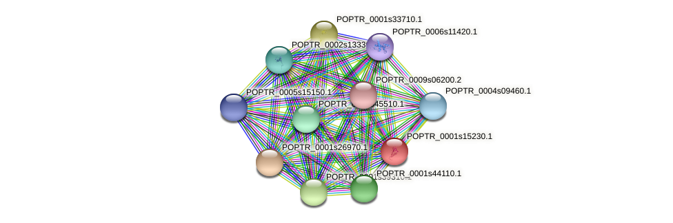 POPTR_0001s15230.1 protein (Populus trichocarpa) - STRING interaction network