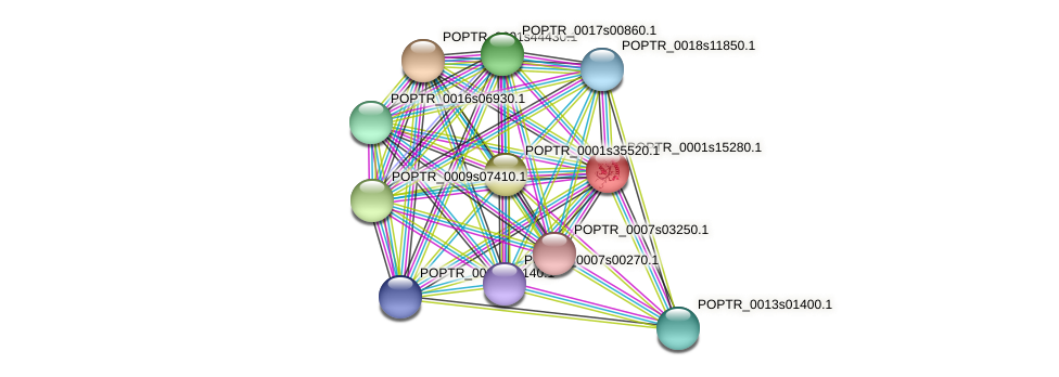 POPTR_0001s15280.1 protein (Populus trichocarpa) - STRING interaction network