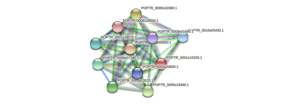 POPTR_0001s15320.1 protein (Populus trichocarpa) - STRING interaction network