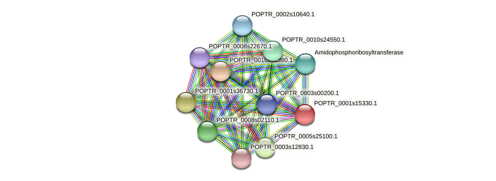 POPTR_0001s15330.1 protein (Populus trichocarpa) - STRING interaction network
