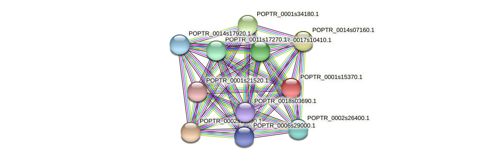 POPTR_0001s15370.1 protein (Populus trichocarpa) - STRING interaction network