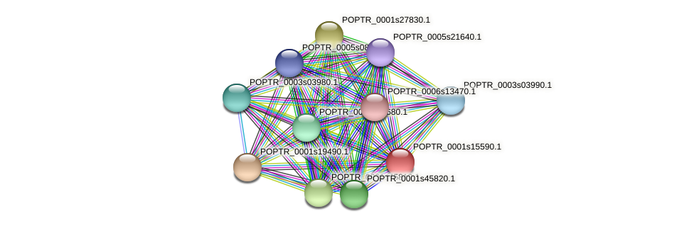 POPTR_0001s15590.1 protein (Populus trichocarpa) - STRING interaction network