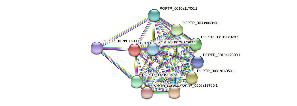 POPTR_0001s16420.1 protein (Populus trichocarpa) - STRING interaction network
