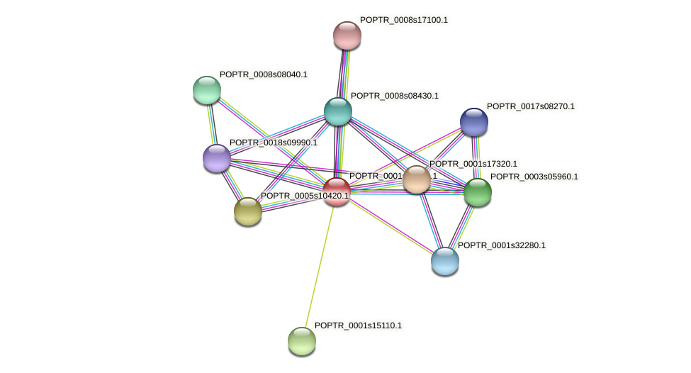 POPTR_0001s16630.1 protein (Populus trichocarpa) - STRING interaction network