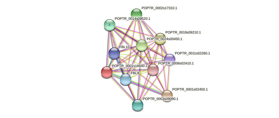 POPTR_0001s16640.1 protein (Populus trichocarpa) - STRING interaction network