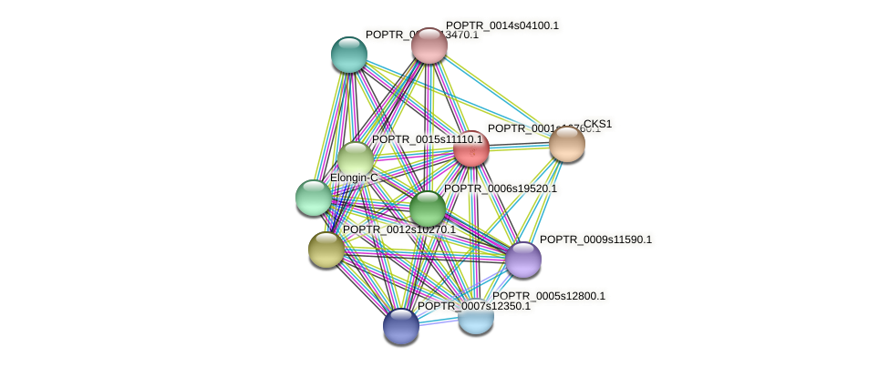POPTR_0001s16760.1 protein (Populus trichocarpa) - STRING interaction network