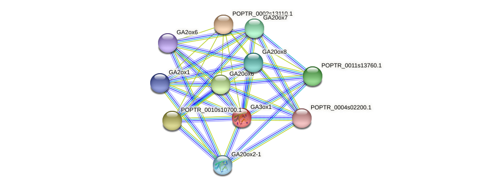 POPTR_0001s17680.1 protein (Populus trichocarpa) - STRING interaction network