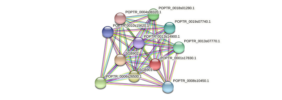 POPTR_0001s17830.1 protein (Populus trichocarpa) - STRING interaction network