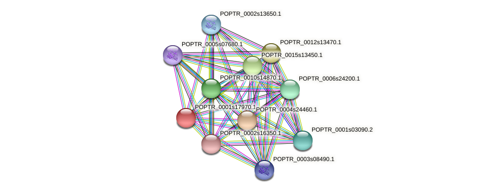 POPTR_0001s17970.1 protein (Populus trichocarpa) - STRING interaction network