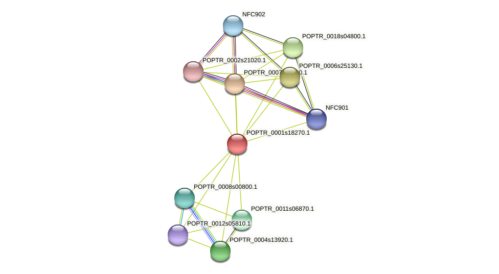 POPTR_0001s18270.1 protein (Populus trichocarpa) - STRING interaction network
