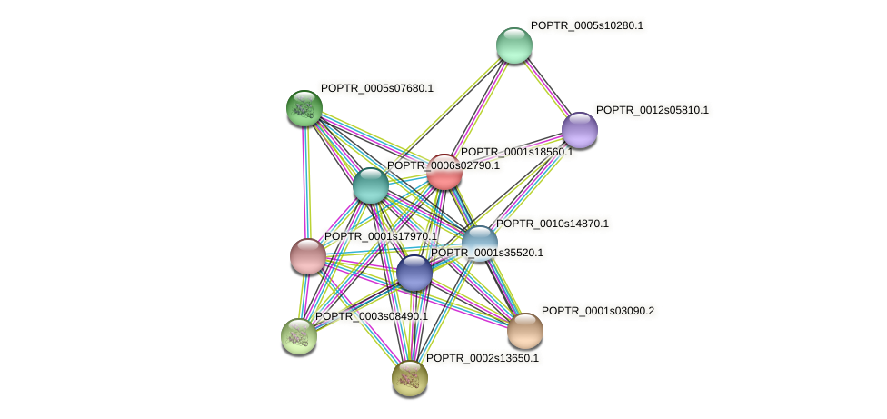 POPTR_0001s18560.1 protein (Populus trichocarpa) - STRING interaction network