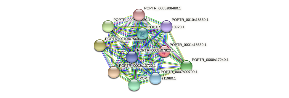 POPTR_0001s18630.1 protein (Populus trichocarpa) - STRING interaction network