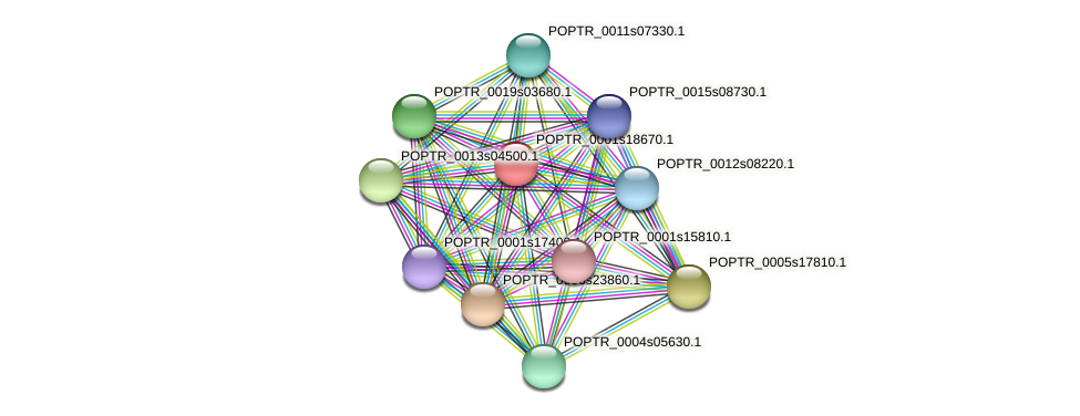POPTR_0001s18670.1 protein (Populus trichocarpa) - STRING interaction network