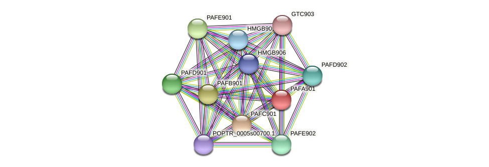 POPTR_0001s19090.1 protein (Populus trichocarpa) - STRING interaction network