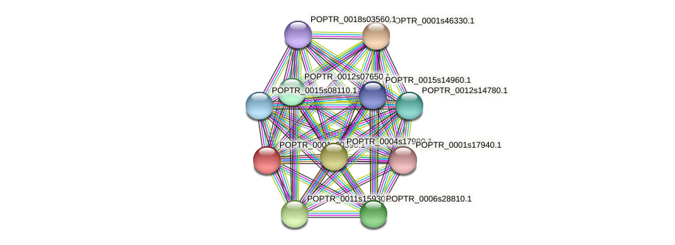 POPTR_0001s20390.1 protein (Populus trichocarpa) - STRING interaction network
