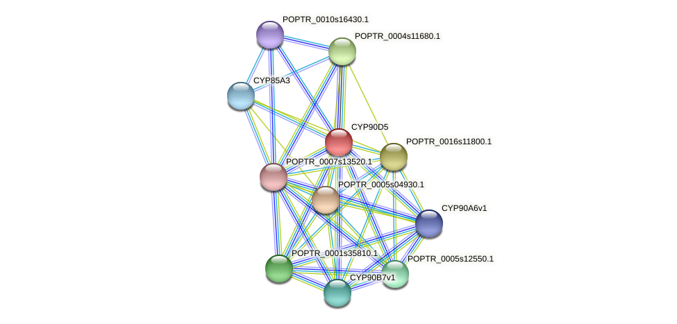 POPTR_0001s20720.1 protein (Populus trichocarpa) - STRING interaction network