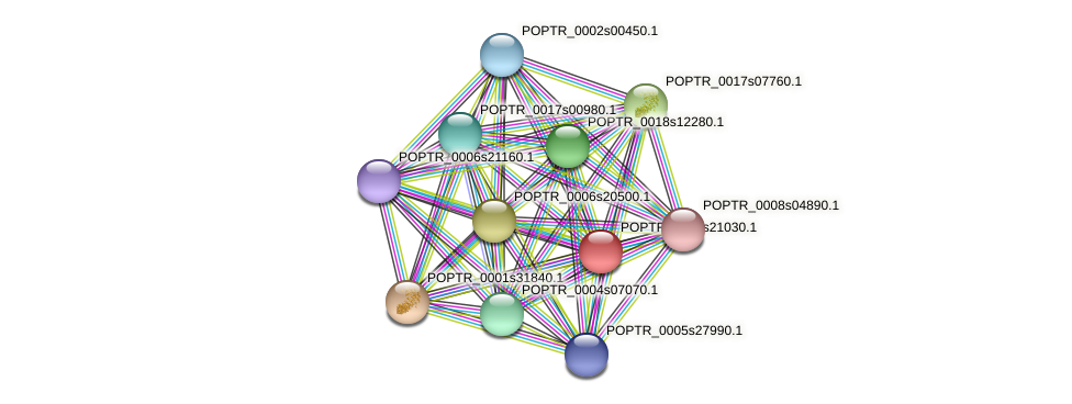 POPTR_0001s21030.1 protein (Populus trichocarpa) - STRING interaction network