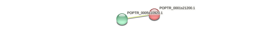 POPTR_0001s21200.1 protein (Populus trichocarpa) - STRING interaction network