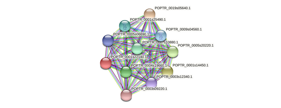 POPTR_0001s22140.1 protein (Populus trichocarpa) - STRING interaction network