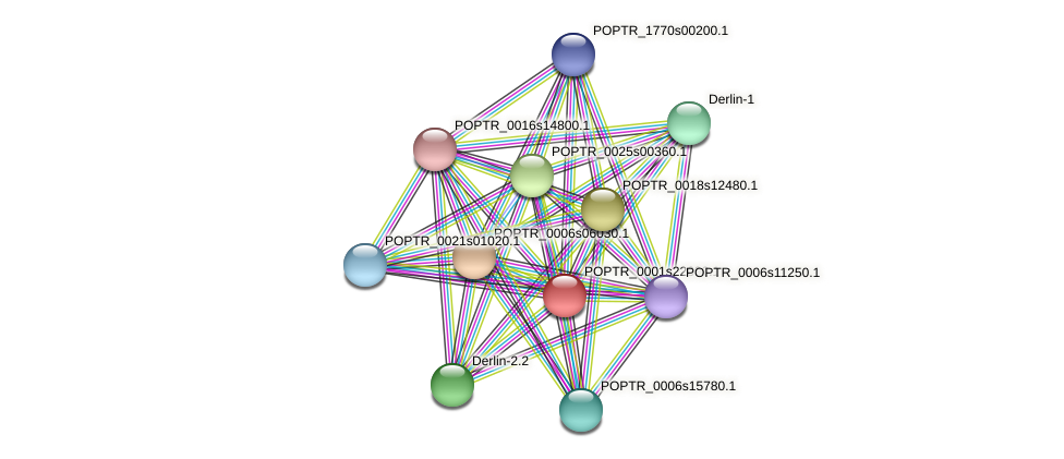 POPTR_0001s22690.1 protein (Populus trichocarpa) - STRING interaction network