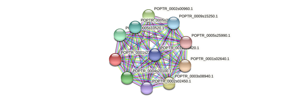 POPTR_0001s23520.1 protein (Populus trichocarpa) - STRING interaction network