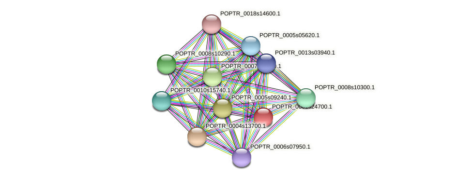 POPTR_0001s24700.1 protein (Populus trichocarpa) - STRING interaction network