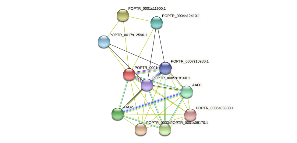 POPTR_0001s24940.1 protein (Populus trichocarpa) - STRING interaction network