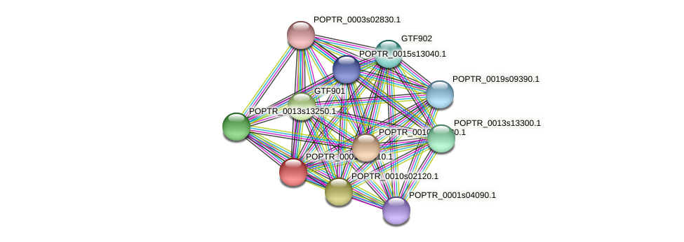 POPTR_0001s25310.1 protein (Populus trichocarpa) - STRING interaction network