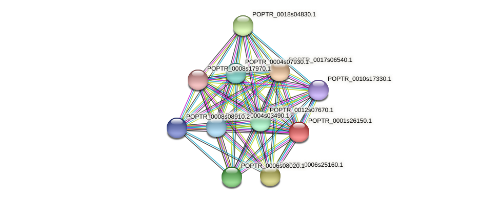 POPTR_0001s26150.1 protein (Populus trichocarpa) - STRING interaction network