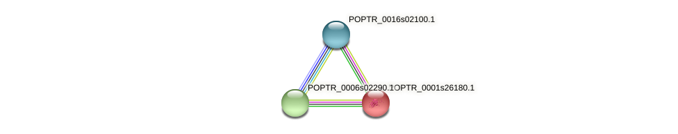 POPTR_0001s26180.1 protein (Populus trichocarpa) - STRING interaction network