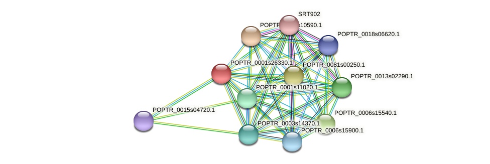 POPTR_0001s26330.1 protein (Populus trichocarpa) - STRING interaction network