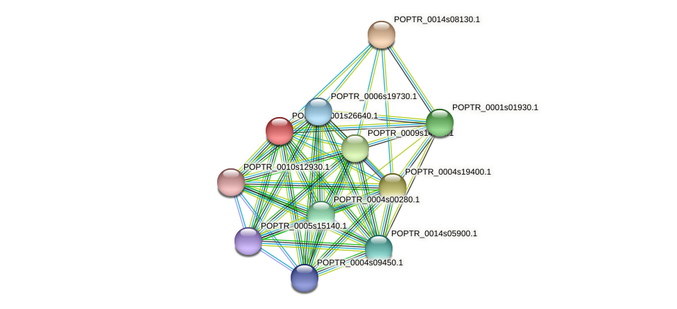 POPTR_0001s26640.1 protein (Populus trichocarpa) - STRING interaction network