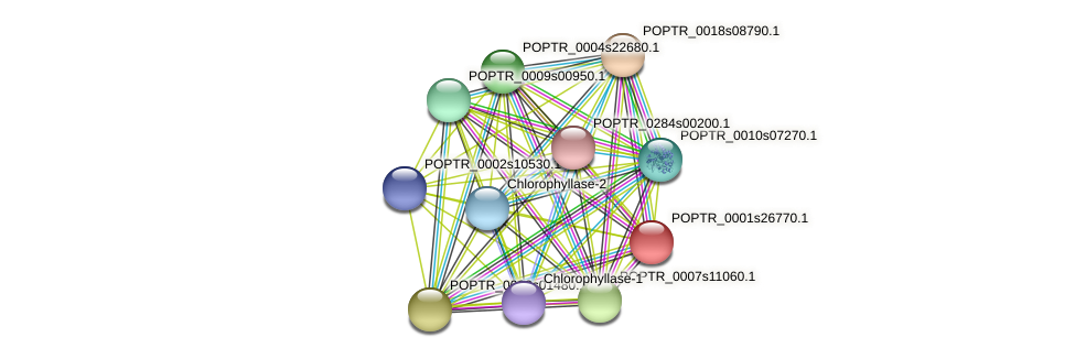 POPTR_0001s26770.1 protein (Populus trichocarpa) - STRING interaction network