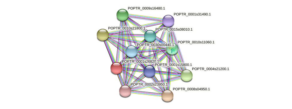 POPTR_0001s26820.1 protein (Populus trichocarpa) - STRING interaction network