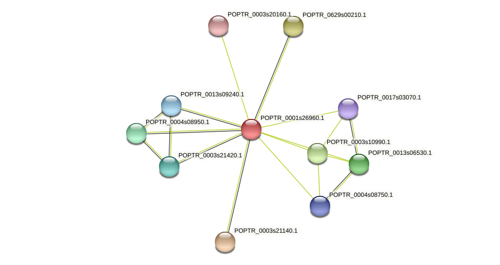 POPTR_0001s26960.1 protein (Populus trichocarpa) - STRING interaction network
