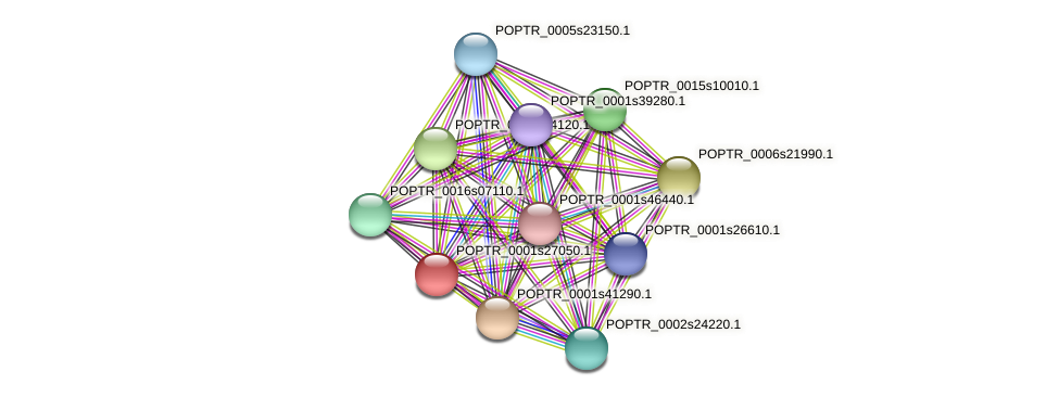POPTR_0001s27050.1 protein (Populus trichocarpa) - STRING interaction network