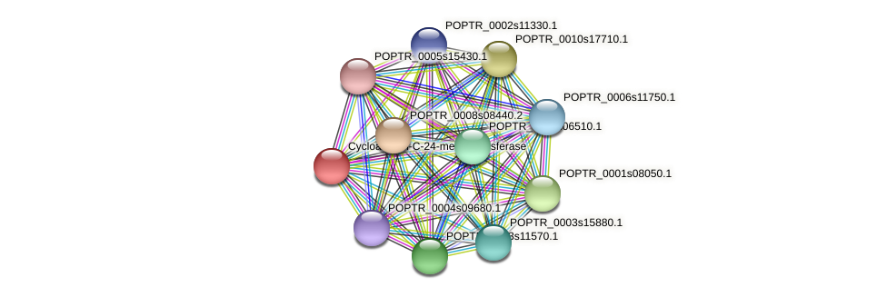 POPTR_0001s27090.1 protein (Populus trichocarpa) - STRING interaction network