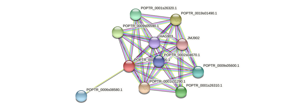 POPTR_0001s27200.1 protein (Populus trichocarpa) - STRING interaction network