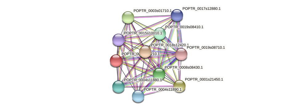 POPTR_0001s27210.1 protein (Populus trichocarpa) - STRING interaction network