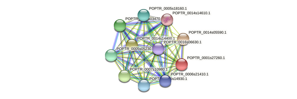 POPTR_0001s27260.1 protein (Populus trichocarpa) - STRING interaction network
