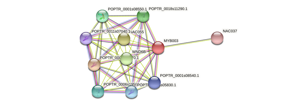 POPTR_0001s27430.1 protein (Populus trichocarpa) - STRING interaction network