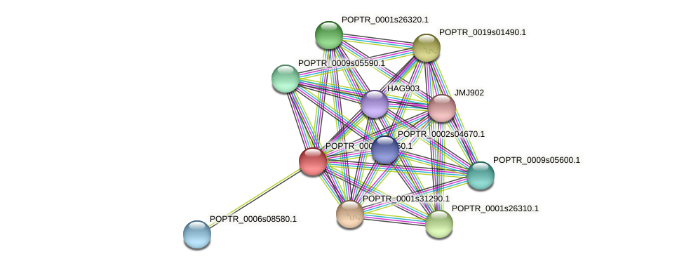 POPTR_0001s27450.1 protein (Populus trichocarpa) - STRING interaction network