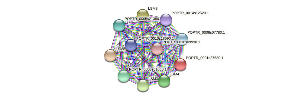 POPTR_0001s27630.1 protein (Populus trichocarpa) - STRING interaction network