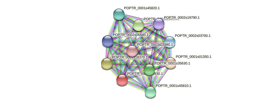 POPTR_0001s27830.1 protein (Populus trichocarpa) - STRING interaction network