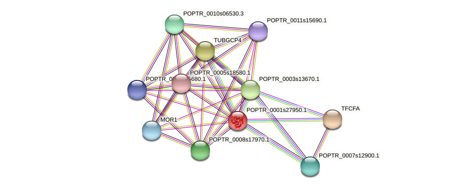 POPTR_0001s27950.1 protein (Populus trichocarpa) - STRING interaction network