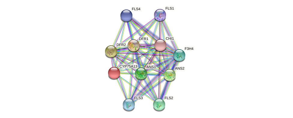 POPTR_0001s28140.1 protein (Populus trichocarpa) - STRING interaction network
