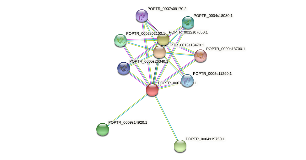 POPTR_0001s28200.1 protein (Populus trichocarpa) - STRING interaction network