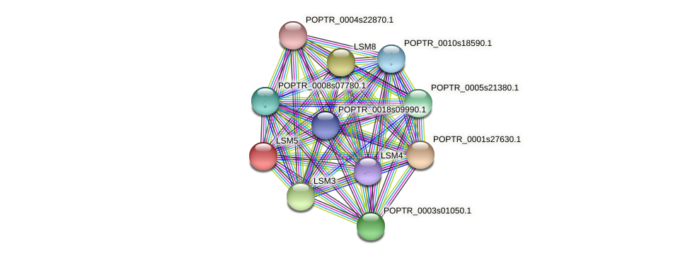 POPTR_0001s28450.1 protein (Populus trichocarpa) - STRING interaction network